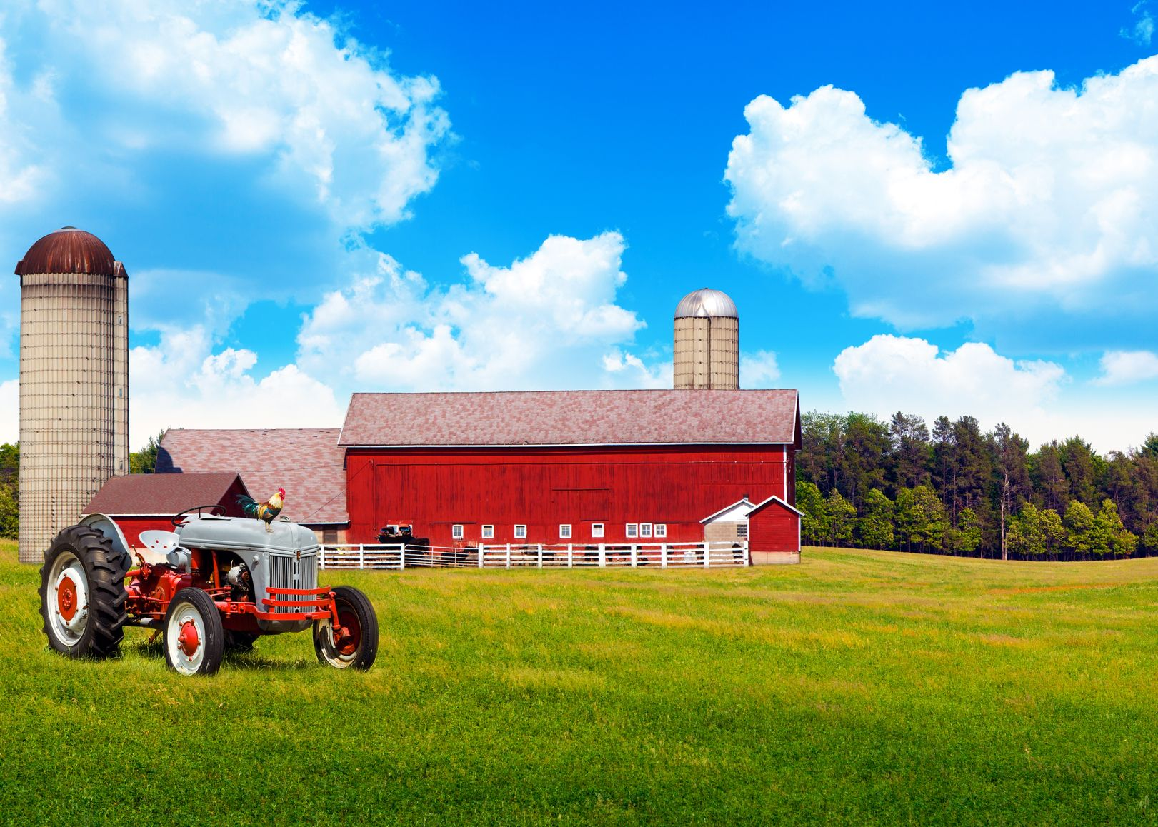Finger Lakes Farm & Ranch Insurance